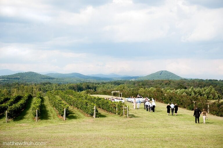 Guest Arriving At Wedding Ceremony In Wine Vineyard With Blue Ridge Mountains Background Chattooga