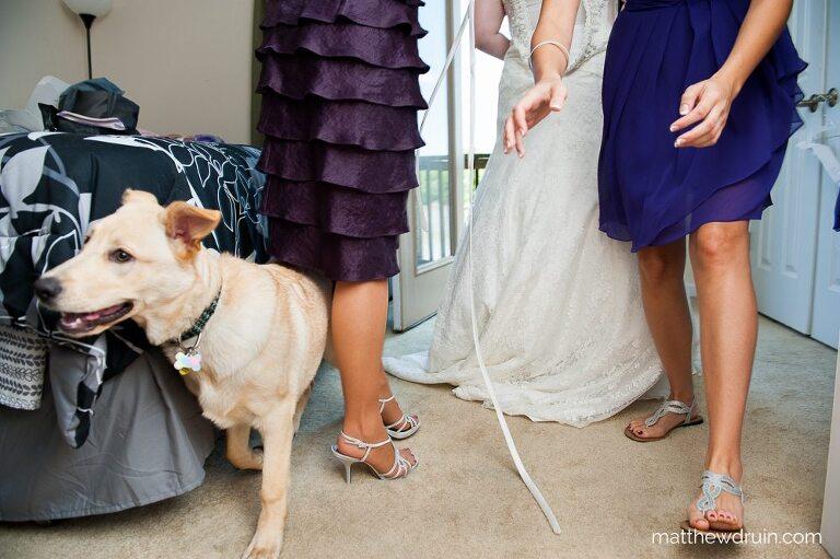 Bride putting on wedding dress with bridesmaid in purple dress chasing dog for Atlanta wedding
