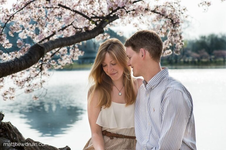 Engaged couple sitting by lake with cherry blossoms at Washington DC engagement session