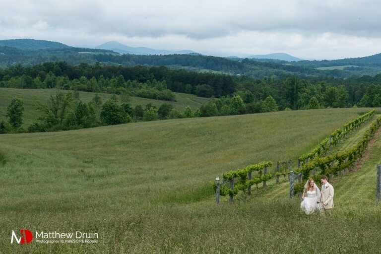 Bride and groom walking through vineyard field with mountains in background at Chattooga Belle Farm wedding