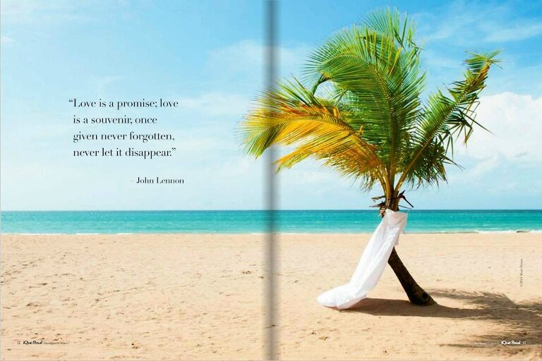 Dress hanging from palm tree on beach with ocean in Que Pasa Puerto Rico & Virgin Islands Magazine
