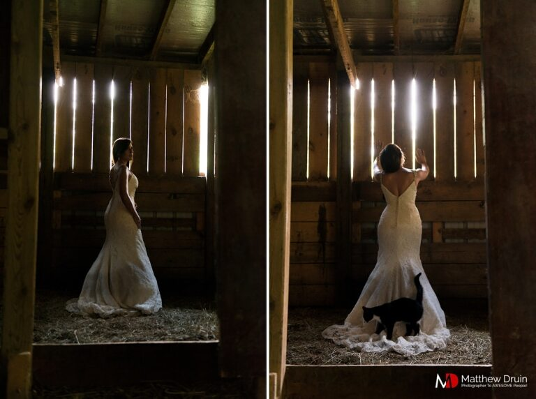 Cat walking across brides dress while standing in barn at sunset in the Blue Ridge Mountains