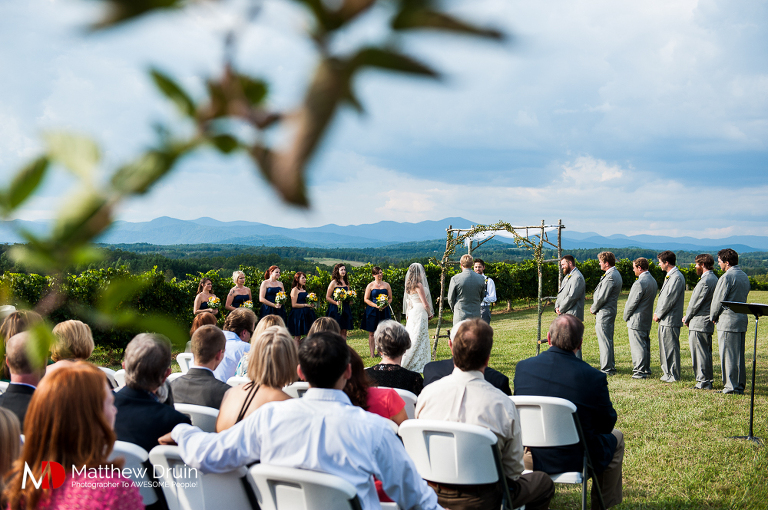 Wedding Ceremony In Vineyard At Chattooga Belle Farm