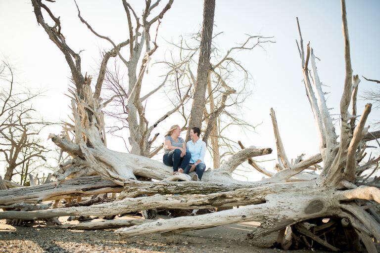 Gay couple laughing sitting on beach tree at destination engagement session at Edisto Beach South Carolina